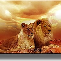 Lion and Lioness Picture on Stretched Canvas Wall Art Decor, Ready to Hang!