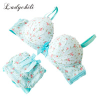 2014 Bra And Panty Set  Brand Women Floral Underwear Pink Bra Set Sweet Lolita Style Conjunto Calcinha E Sutia Underwear Sets N7