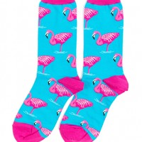 Flamingo Socks by Socksmith - ShopKitson.com