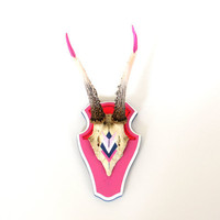 PINK, WHITE & NAVY aztec diamond arrow geometric painted mount deer skull antlers horns - taxidermy unusual modern trophy decor quirky gift