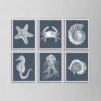 "Nautical Bathroom Print Set. Set of 6. Sea horse. Crab. Shell. Jelly Fish. Dark blue and White. Vintage Inspired. 8.5x11"" Prints"