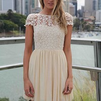 Embroidered Lace Top Dress with Tulle Pleated Skirt