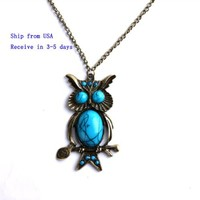 Unique Bronze Owl Filled Turquoise Pendant Copper-plated Metal Necklace