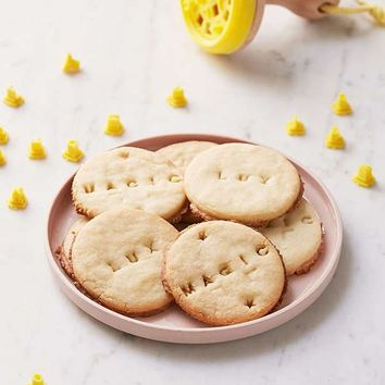 Letters & Numbers Cookie Press Stamp