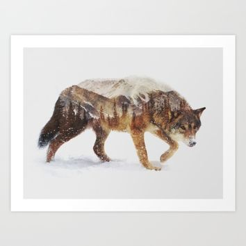 Arctic Wolf Art Print by Andreas Lie