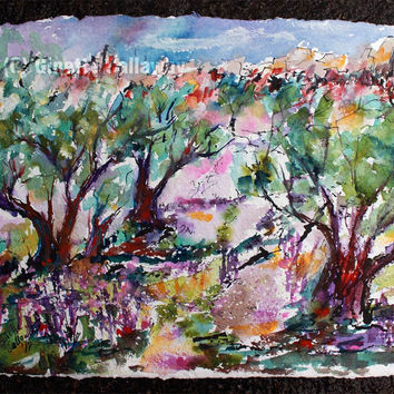 Walking Among The Olive Trees in Provence