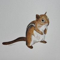 Striped Chipmunk Nature Art, Watercolor Animal Painting, Original Watercolor Painting, Home Decor, Natural History, Nursery Decor
