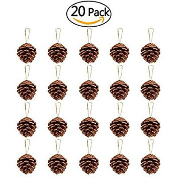 NICEXMAS Real Pinecone Ornaments for Home or Holiday Decorations Set of 20