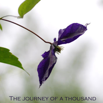 Digital Download Photography, Typography, Inspirational Quote, Nature Photography, Flower Photography, Purple Clematis, Printable - Journey