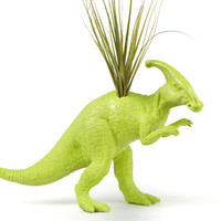 Lime Green Dinosaur planter with air plant