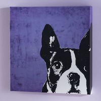 Graphic French Bulldog Wall Art
