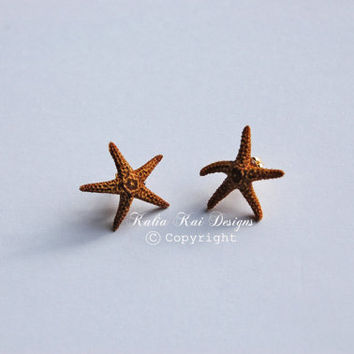 SALE SALE SALE Small Brown real Starfish post earrings, starfish post earrings, Real Starfish, Hawaiian Earrings, Beach Earrings, boho chic