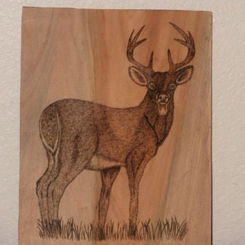 Woodburned Male Deer on Cypress Wood Plaque