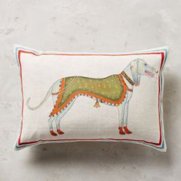 "John Robshaw Dog Pillow in Green Size: 12"" X 18""  Pillows"