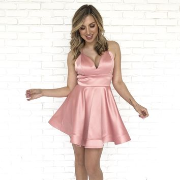 Picture Perfect Skater Dress In Pink
