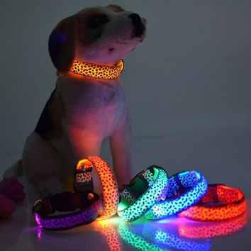 LED light emitting collar pet leopard, spotted dog collar fluorescent lines [8270584449]