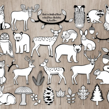 Black Line Woodland Clipart, Woodland Animal Outlines Clipart, Forest Animal Coloring Book Clipart, Woodland Animals Clipart Black and White