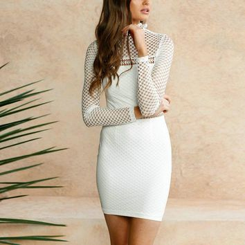 Pencil Dress Long Sheer Sleeves