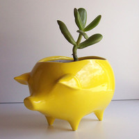Ceramic Pig Planter Vintage Design in Lemon Yellow by fruitflypie