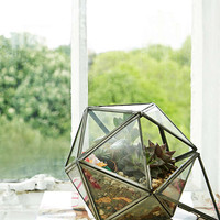 Urban Grow – Terrarium im Sterndesign in Bronze - Urban Outfitters