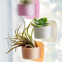 Tooletries Mini Silicone Succulent Wall Planter | Urban Outfitters
