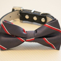 Dark Gray dog bow tie with high quality black leather collar, Chic Dog Bow tie, Wedding Dog Collar