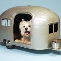 Pet Camper | Pet | Gear