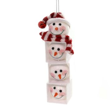 Holiday Ornaments SNOWMAN HEAD BLOCK Plastic Carrot Nose Scarf H9602