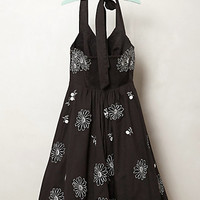 Archival Collection: Daisy Dress