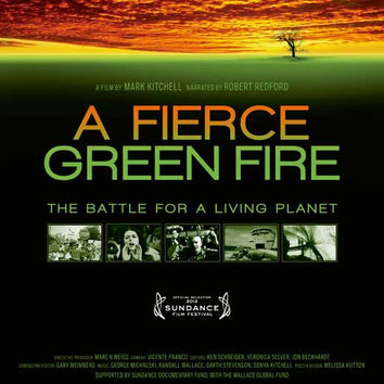 A Fierce Green Fire: The Battle for a Living Planet 11x17 Movie Poster (2013)