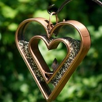 Fly-Thru Heart Venetian Bronze