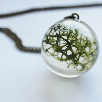 Green Moss Necklace 02 Real Forest Moss by NaturalPrettyThings
