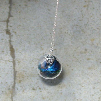 Peacock Feather Filled Glass Locket Necklace in Sterling by tarren
