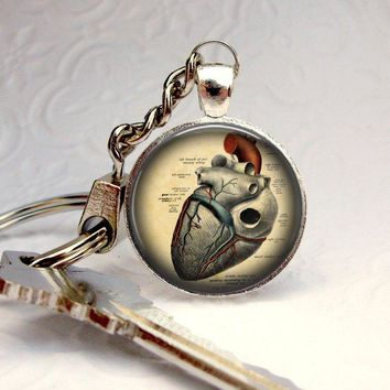 Anatomical Heart Keychain : Picture Pendant Keychain Photo Keychain Art Keychain Handcrafted Accessories (1645)