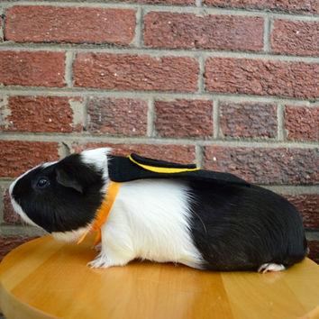 Guinea pig Batman costume cape - BatPig cavy cape costume