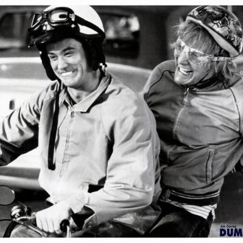 Dumb and Dumber 27x40 Movie Poster (1994)