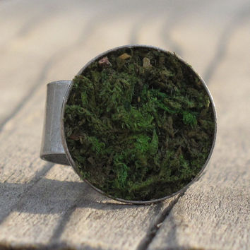 Eco-Friendly Moss Ring, Earth Day, Terrarium Jewelry, Living Plant Jewelry, Terrarium Ring, Garden Gift