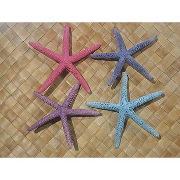 Colorful Starfish Hair Clip