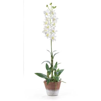 SheilaShrubs.com: White Dendrobium w/White Wash Pot Silk Flower Arrangement 4605-WH by Nearly Natural : Artificial Flowers & Plants