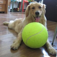 9.5 Inches Dog Tennis Ball Giant Pet Toy Tennis Ball Dog Chew Toy Signature Mega Jumbo Kids Toy Ball For Dog's Supplies