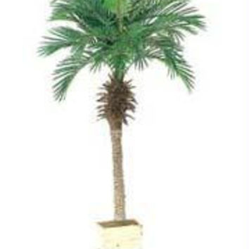 2 Artificial Palm Trees - Phoenix