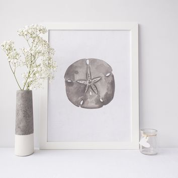 Neutral Coastal Sand Dollar Art Print