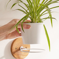 Single Herb Wall Planter | Urban Outfitters