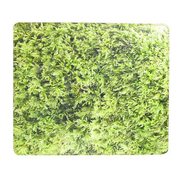 Leather Mouse Mat - Moss Mat