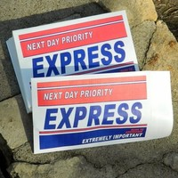 Priority Express Marketing Envelopes 6 x 9 15/lot Self Seal Mailing Shipping 1st