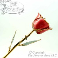 Ruby Sun Golden Rose: