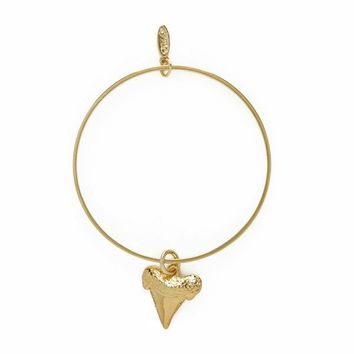 Shark Tooth Charm Gold Bangle