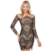 Sexy Bodycon Transparent Lace Grenadine Long Sleeve Dress/Party Dress
