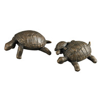 Turtle Shelf Sitters
