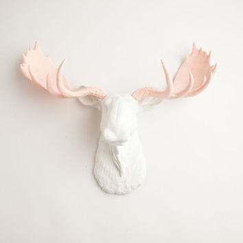 The Anita - White w/ Cameo Pink Antlers Resin Moose Head- Moose Resin White Faux Taxidermy- Chic & Trendy